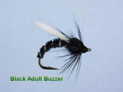 Black_Adult_Buzz_4e298a0ecc7bc