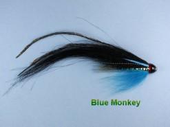 Blue_Monkey_Fish_4e295d99d7cc5